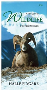 A Field guide to Wildlife in the Rocky Mountains Photo